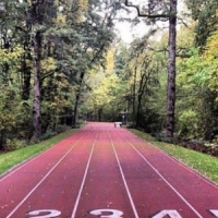 7 Great Runs That Will Make Your Day ...