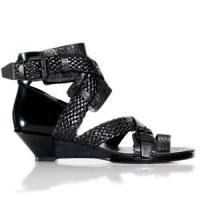 8 Gorgeous Black Alexander Wang Mid-heels ...