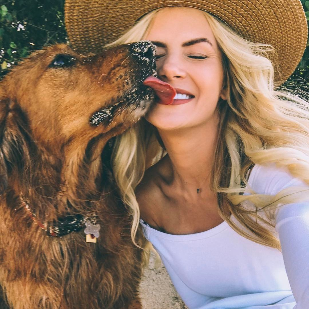 10 Fun 🤗 Things to do 🎾 with Your Dog 🐶 ...