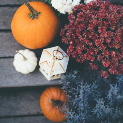 Fall Decor Ideas 🍂 for Women Who Want to Transform Their Home 🏡 in an Instant ...