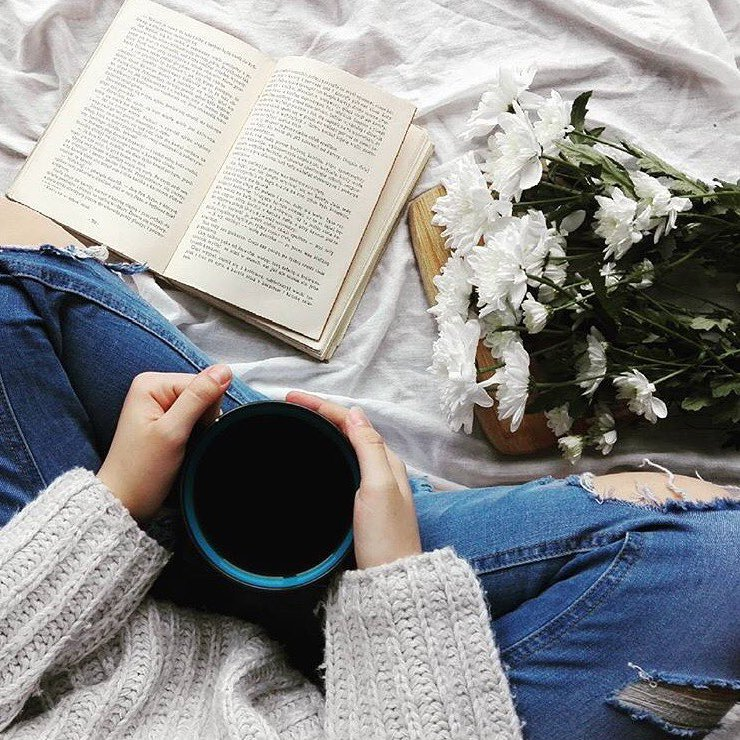 7 Feminist Books 📚 Every Woman 🙋🏼🙋🏽🙋🏿🙋🏻 Should Read 👓 ...