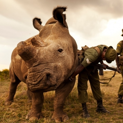 Heart-Breaking Pictures of How Humans Are Damaging Planet Earth ...