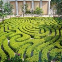 8 Amazing Mazes ...