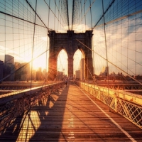 7 Things to do in NYC ...