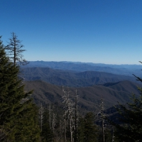 8 Great Reasons to Visit the Smoky Mountains ...