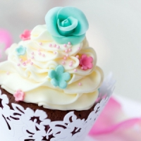 8 Great Places to Sink Your Teeth into Cupcakes ...