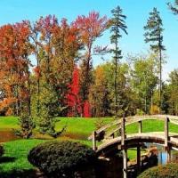 9 Beautiful Botanical Gardens around the World ...