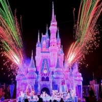 20 Must do Things at Disney World ...