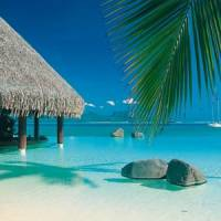 8 Fabulous Experiences to Have in Tahiti ...