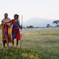 8 Top Things to do in Tanzania ...