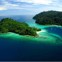 7 Fun Facts about Borneo ...