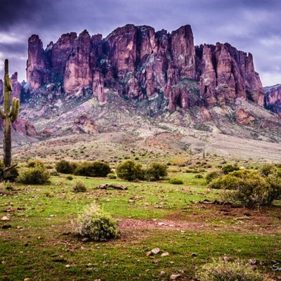 7 Top Attractions of Phoenix That Call You to Visit