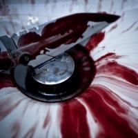 5 Things Vampires May like ...