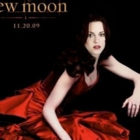 A Biography on Bella Swan (the Twilight Character, Not Kristen Stewert)
