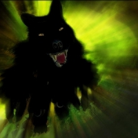 5 Reasons People Are Afraid of Werewolves ...