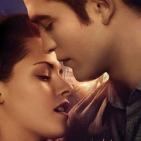 Breaking Dawn is Almost Here!