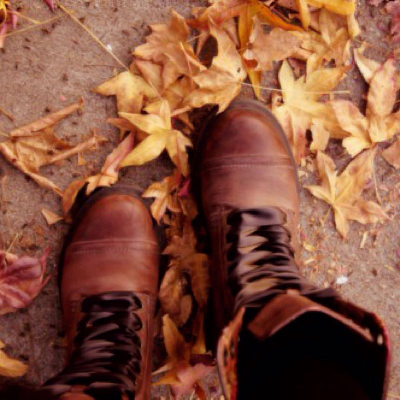 20 Reason Why Fall Is The Best