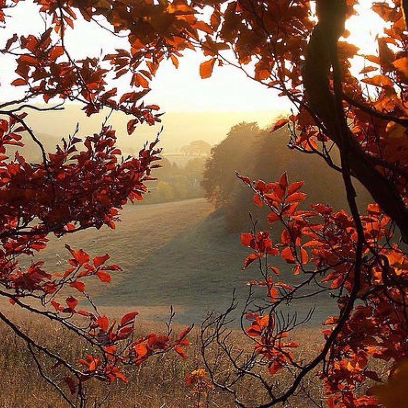 15 Reasons why autumn/winter rocks