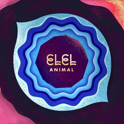 Animal 🎶