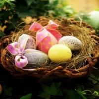 7 Genius Ideas 💡 for a Healthier 💪🏼 Easter Basket 🍇🎾📙 ...