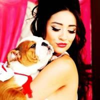 Cuteness Overload: Celebrity Pets on Instagram ...