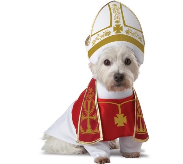 Holy Hound Costume