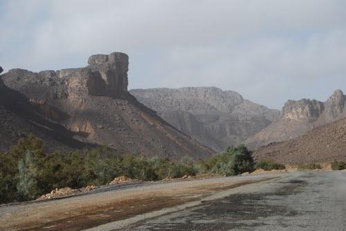 Tit, Algeria