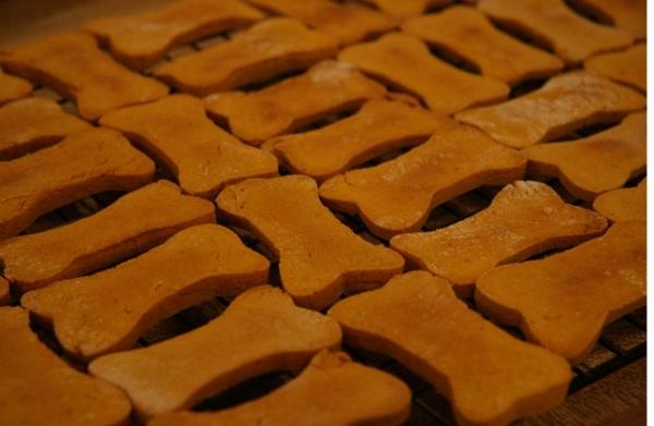 Pupkin Biscuits