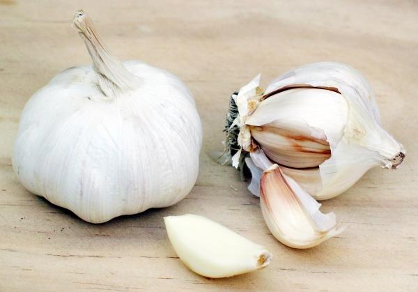Avoid Garlic!