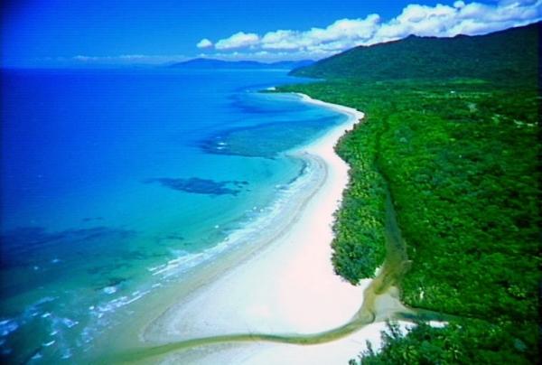 Cape Tribulation Beach in Australia