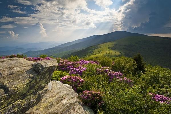 Hike the Appalachian Trail
