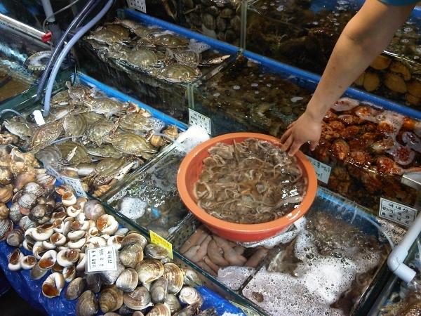 Head to the Hamburg Fish Market