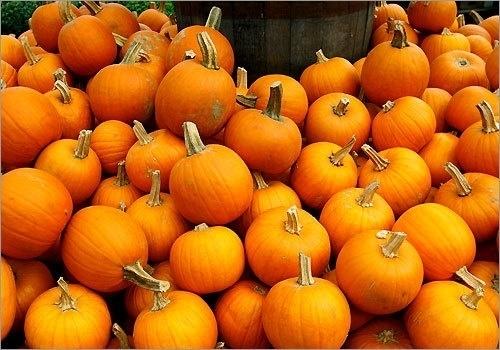 No-knife Pumpkins