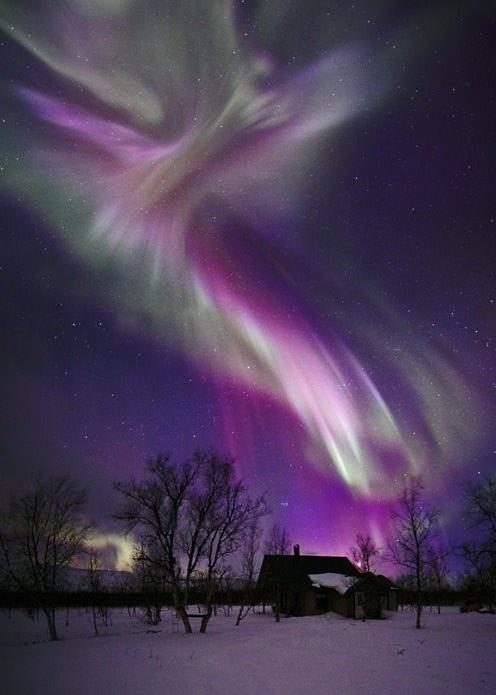 View the Aurora Borealis