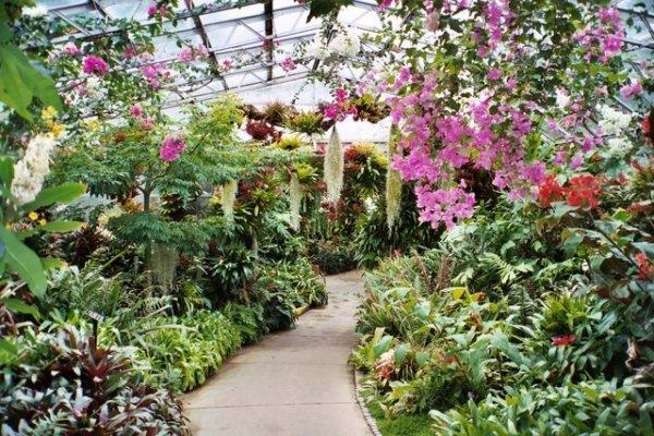 Visit Gardens for Inspiration