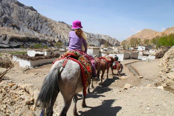Gallop through Mustang