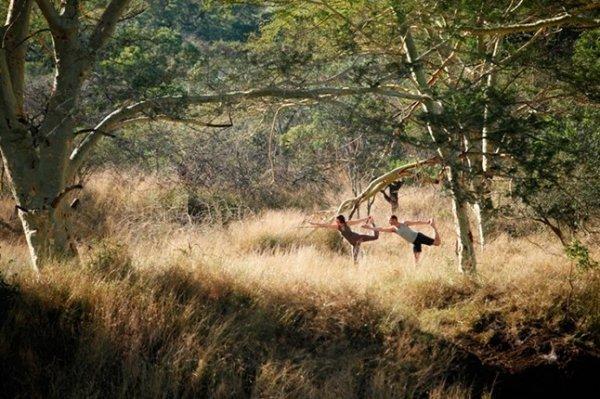South Africa Yoga Safaris Retreats and Holidays - Various, South Africa