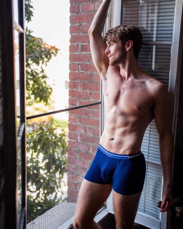 man, undergarment, briefs, barechestedness, male,