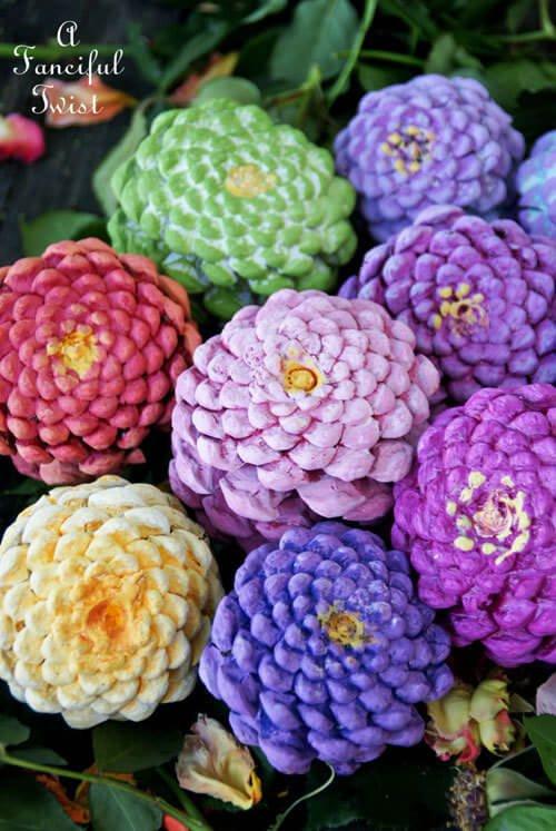 flower, plant, flora, land plant, flowering plant,