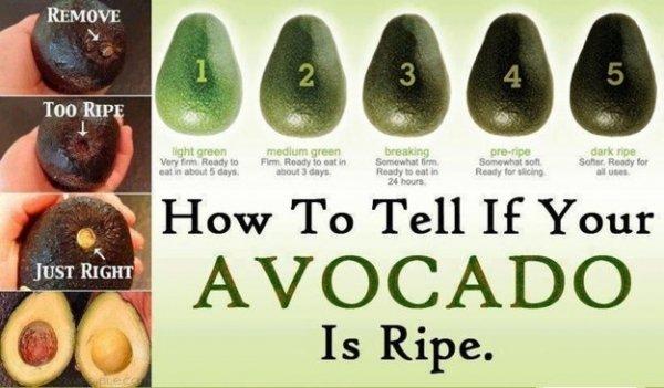 Never Buy an over-ripened Avocado Again