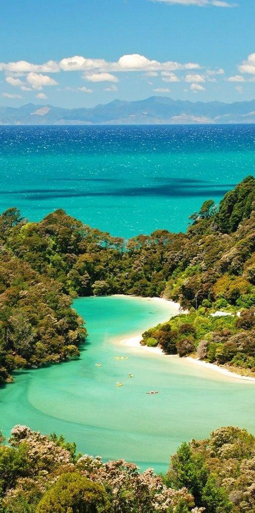 sea, vegetation, tropics, coast, promontory,
