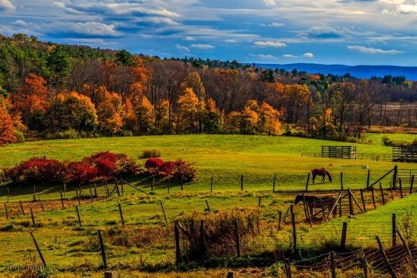 Berkshire Mountains