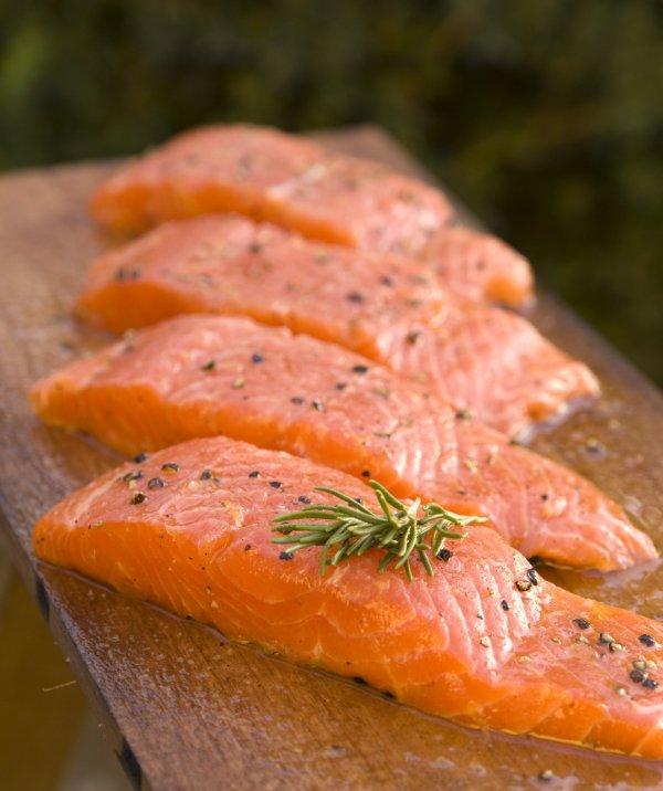 fish,vertebrate,smoked salmon,food,fish,