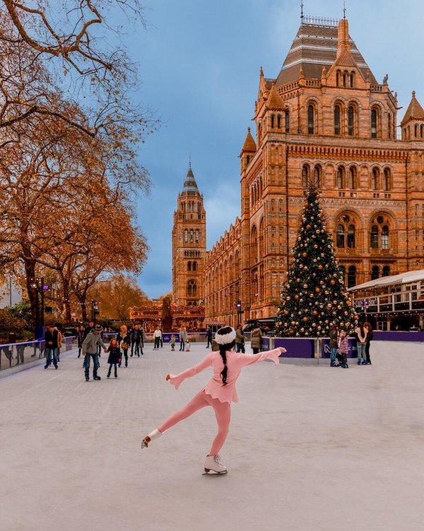 winter, urban area, tree, ice rink, tourist attraction,