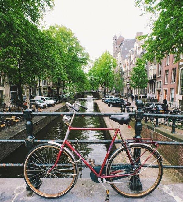 bicycle, cycling, vehicle, snapshot, waterway,