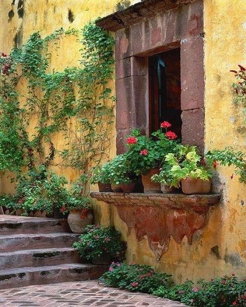 green,wall,house,backyard,painting,