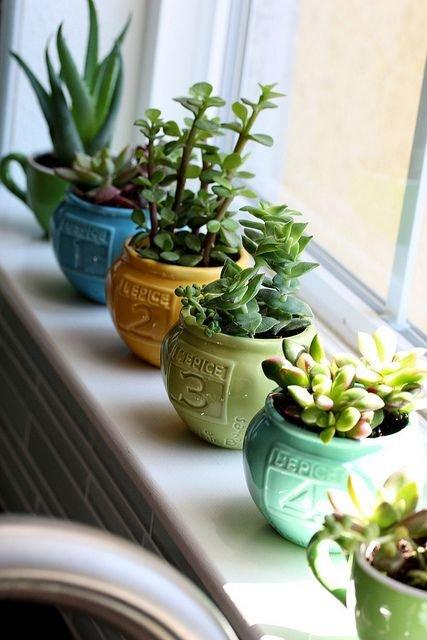green,flower arranging,plant,floristry,produce,