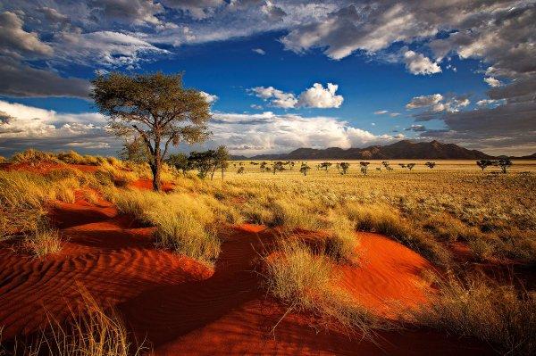 Namibia – 58.5%