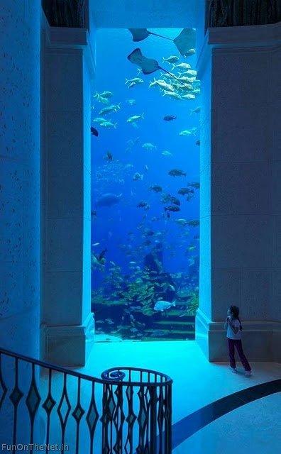 blue,swimming pool,underwater,FunOnTheNet,