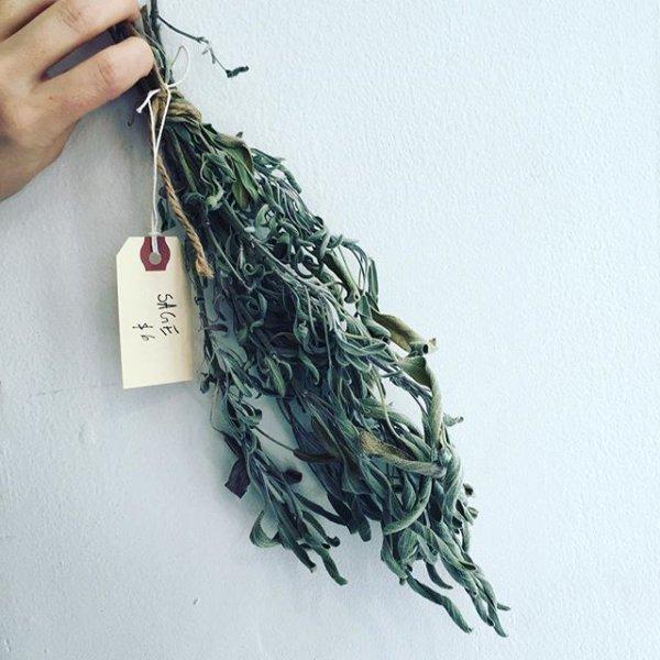 green, leaf, art, fashion accessory, pattern,